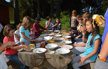 здравословна-храна-лагер-джагадамба - Copy